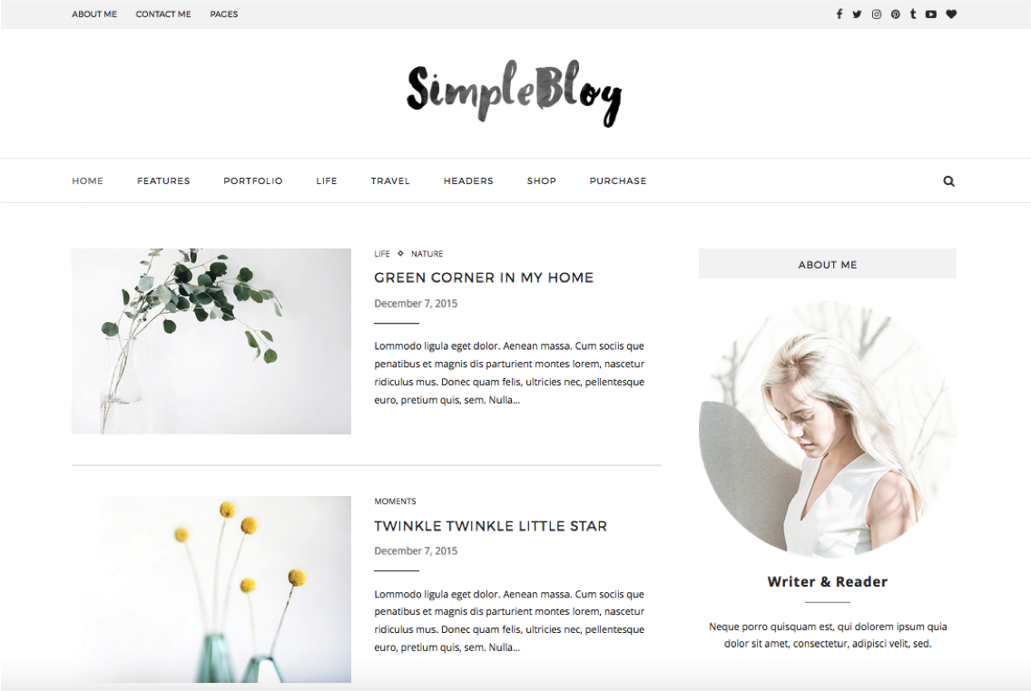 Soledad simple -WordPress teema